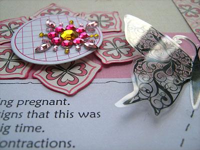 butterflies details
